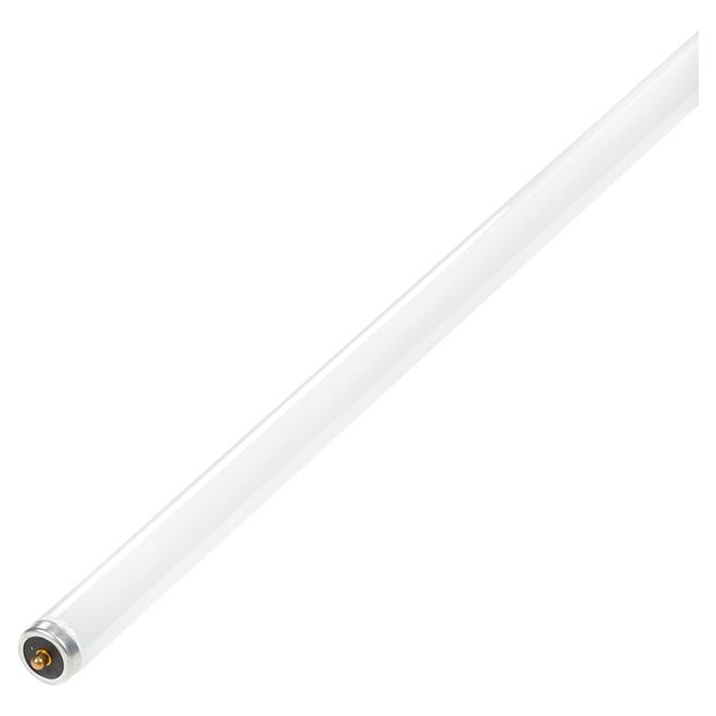 """Light Bulb - 60 Watt - Fluorescent - 96"""""""