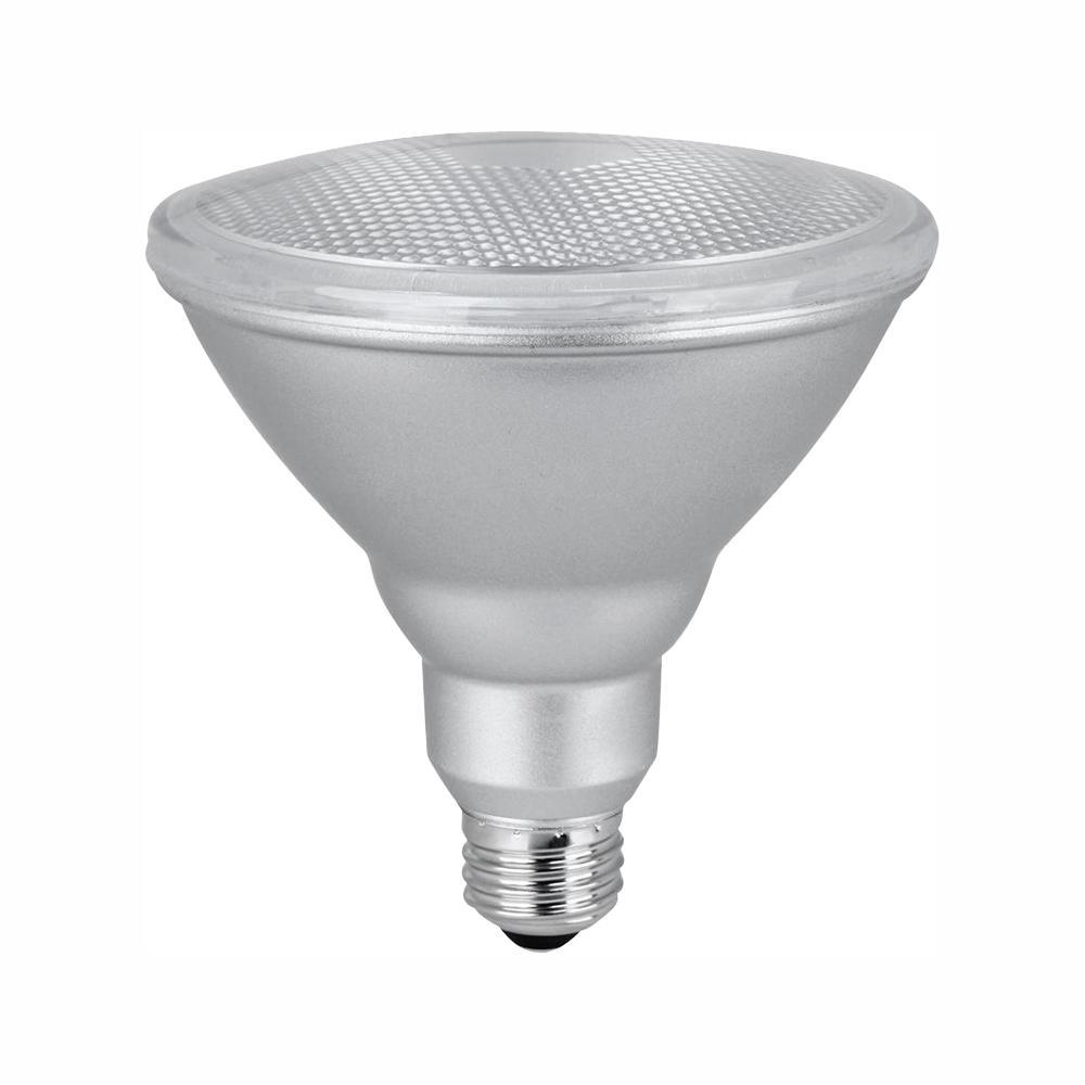 Light Bulb - 90W, Par38 - LED Floodlight 24/Box